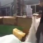 中国のプラスチック米