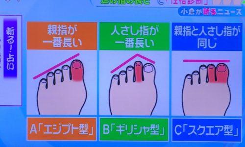 【とくダネ】足の指の長さで性格診断!斬る占いでエジプト型?ギリシャ型?スクエア型?