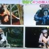 【とくダネ】類人猿分類法で性格診断!あなたはゴリラ?チンパンジー?ボノボ?オランウータン?